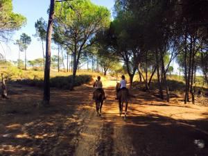 Reiten an der Algarve