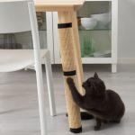 Haustiere wie Katzen und Hunde im Focus des neuen IKEA-Angebots
