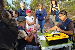Algarve Vogelbeobachtung als Familien-Festival an der Algarve