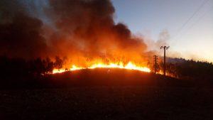 Algarve-News zu Waldbrandsituation in Portugal im Oktober 2017