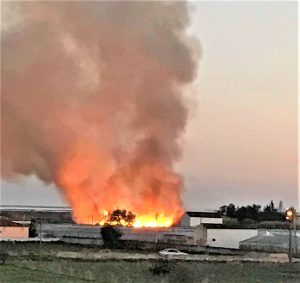 Algare News zu Waldbränden im Winter in Faro an der Algarve