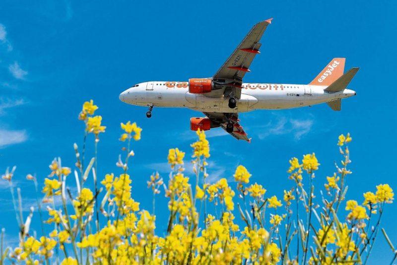Promotion für die Algarve durch mehr Flugverbindungen nach Faro