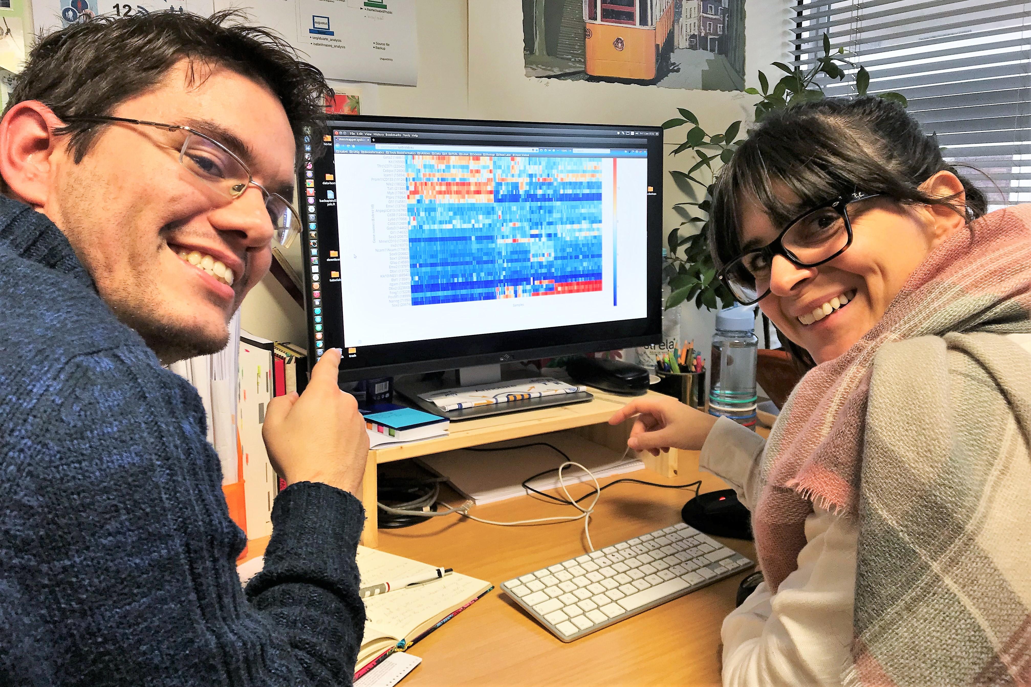 Stammzellen visualisiert durch den an der Universität der Algarve von Bioinformatikern entwickelten StemMapper