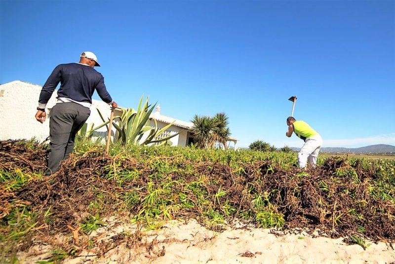 Häftlinge reinigen Algarve-Strand der Insel Armona vor Olhao