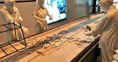 Museum Portimao an der Algarve ist eng mit Fang und Verarbeitung von Sardinen verbunden