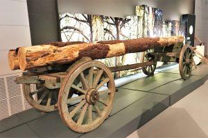 Museum Portimao zeigt Verbindung von Land und Meer an der Algarve