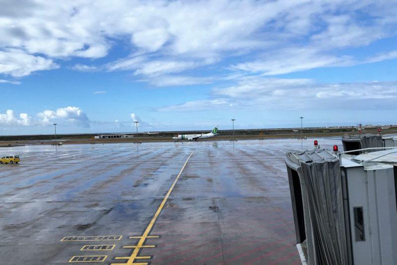 Artikel über Transavia-Landung in Faro an der Algarve wegen stinkenden Passagiers