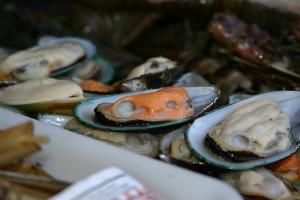 Algarve-Sommer mit Meeresfrüchte-Festival der Ria Formosa in Faro