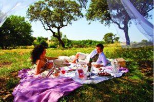 Alentejo-Weine immer öfter Anlass zu Reisen im Spätsommer und Herbst