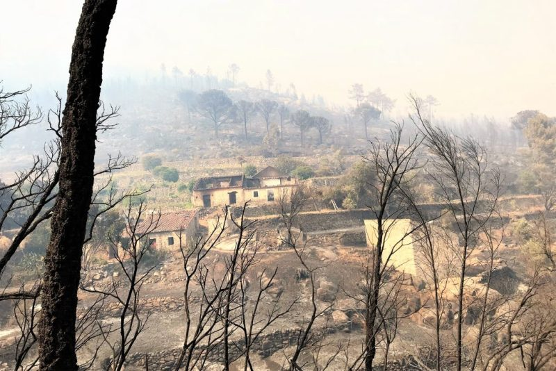 Algarve-Hotel und Wohnhäuser litten unter dem Waldbrand bei Monchique