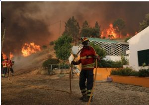 Algarve-Feuerwehr durch fehlende Zugänge zu Waldbrand-Flächen behindert