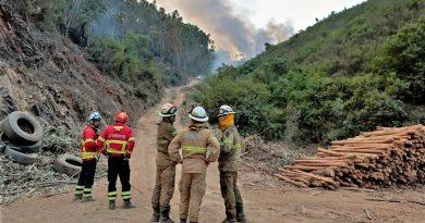Hitze-Hölle: Bei 40 Grad bekämpft Portugals Feuerwehr den Flächenbrand bei Monchique