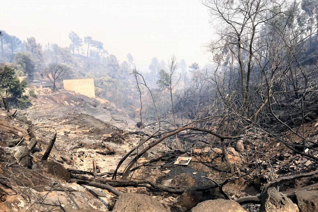 Robert Nestmann verlässt verwüstete Waldbrand-Gebiete im Raum Monchique an der Algarve