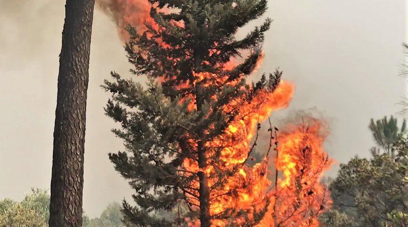 Algarve-Hotel in Monchique war am Montagabend von Flammen umzingelt