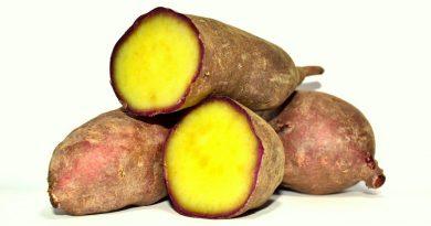 Süßkartoffel hat in Aljezur an der Algarve ein eigenes Festival