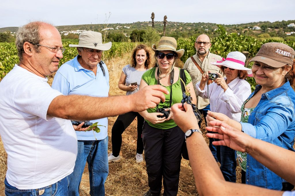 Weinreisen an die Algarve mit Besuchen beim Winzer